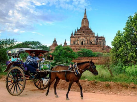 Bagan Horse Cart Tour with Guide