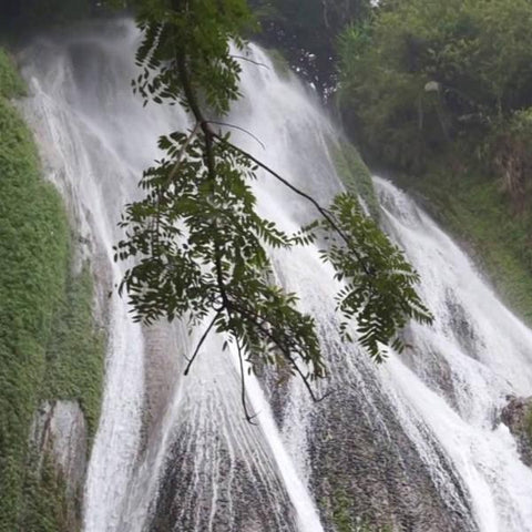 Nam Tok Waterfall ( Half Day Walking Tour) - Alamanda Travels, Myanmar