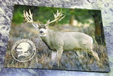 NAHC Muzzleloader World Record Mule Deer Bucks Bulls Silver Collector Coin - Big Sky Knife