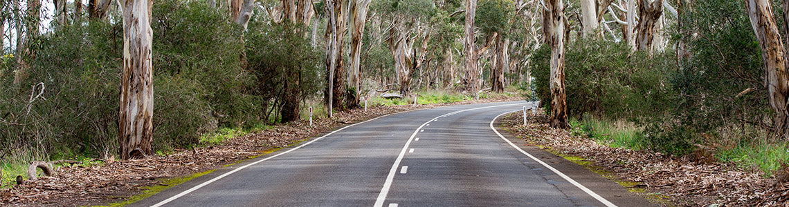 Picture of Tasmanian Road