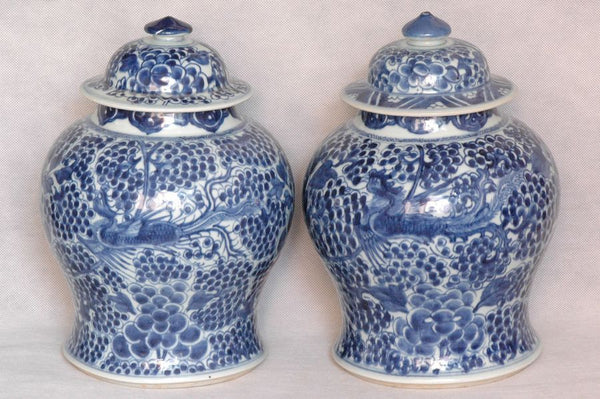 Pair of Chinese Qing Blue and White Porcelain Jar Kangxi , 17C