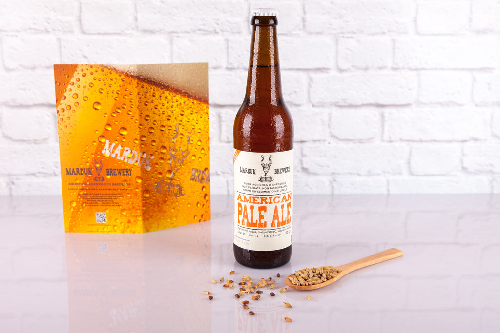 American Pale Ale - 500ml