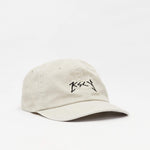 Destruction Dad Cap Pigment Grey