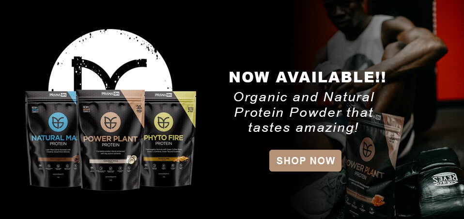 PranaON Supplements Plant Protein