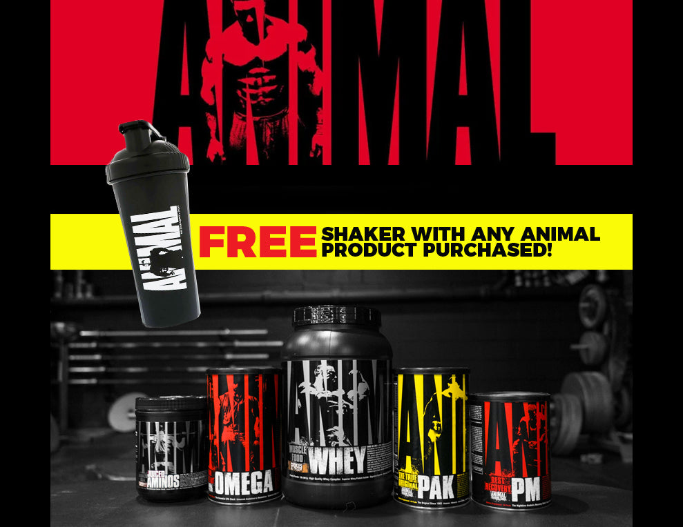 Free Animal Shaker with Animal Orders