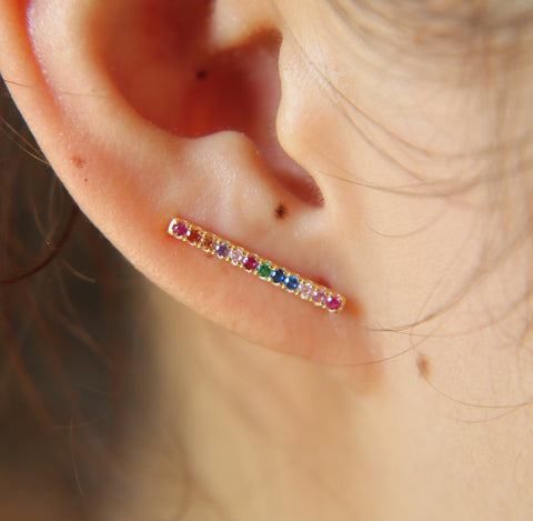 Beautiful like a Rainbow earrings