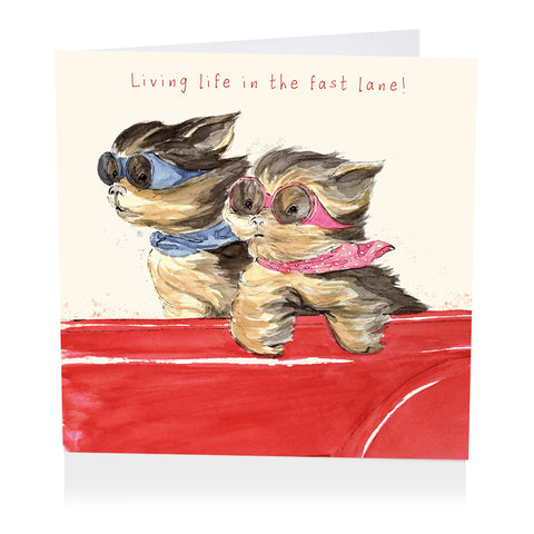 Dog Birthday Card - Living Life in the Fast Lane! - Art Beat