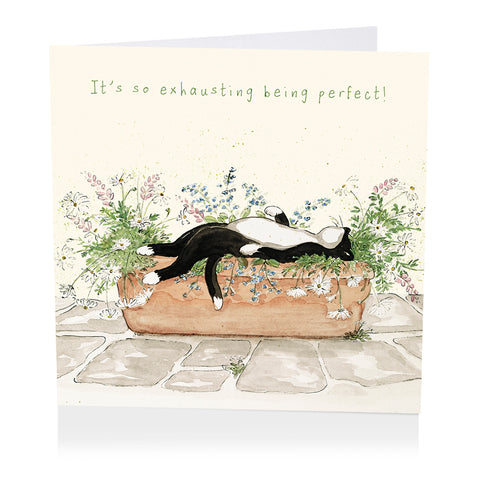 Cat Birthday Card - It's so exhausting being perfect! - Art Beat