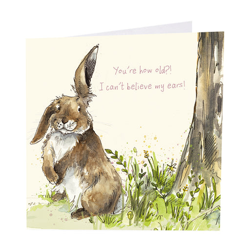 Hare Card - You're How Old?!  I Can't Believe My Ears!