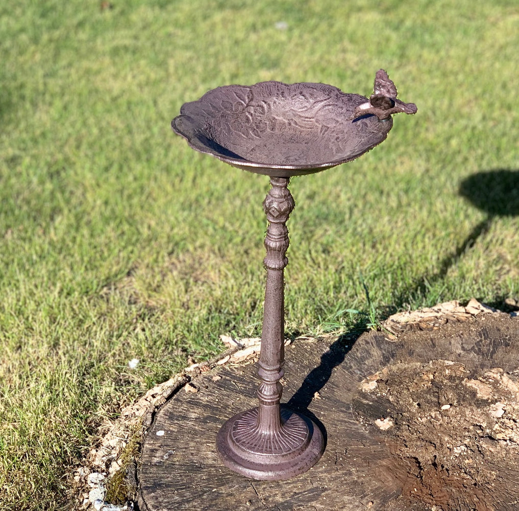 Bird Bath - Pedestal Bird Feeder