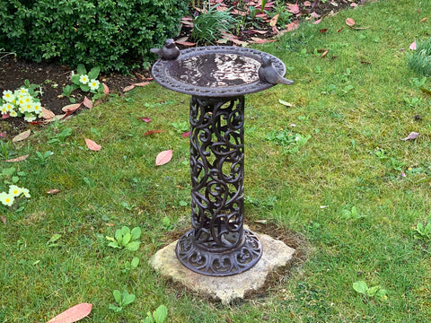 Bird Bath - Decorative Base Pedestal Bird Feeder