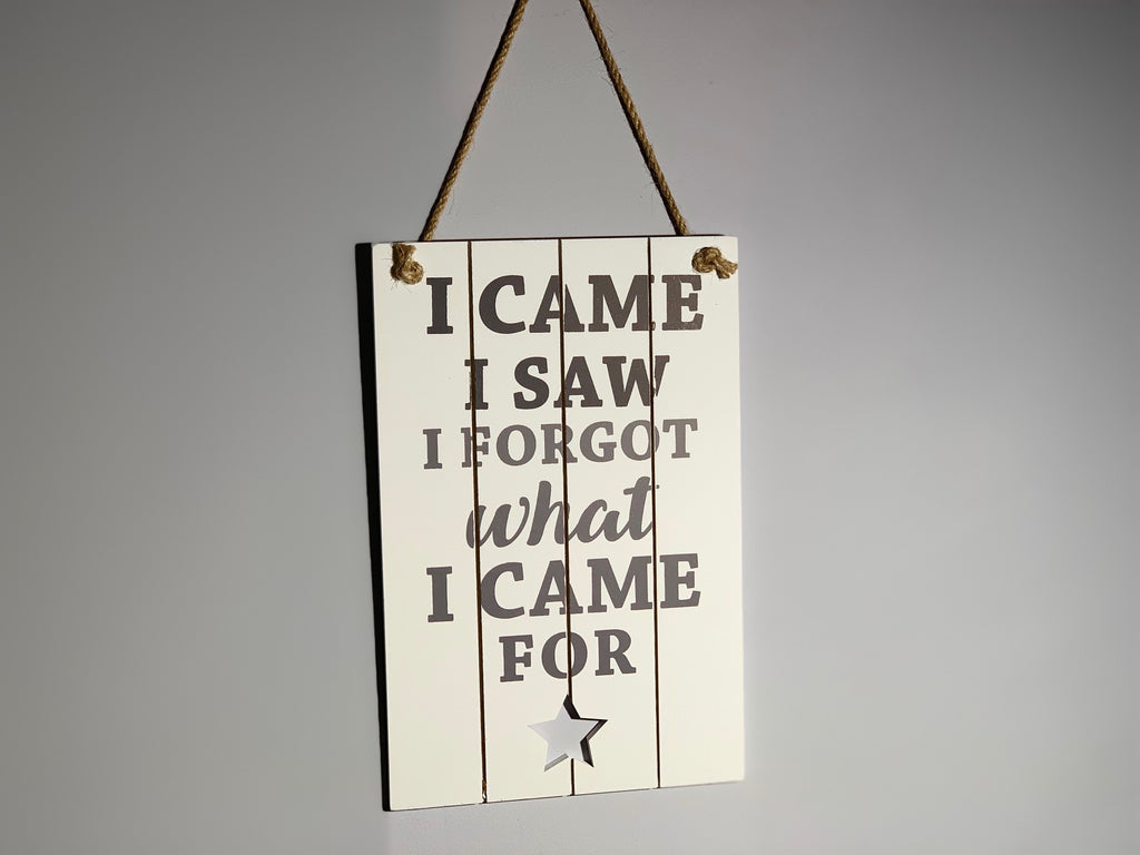I Came I Saw I Forgot What I Came For - Hanging Plaque