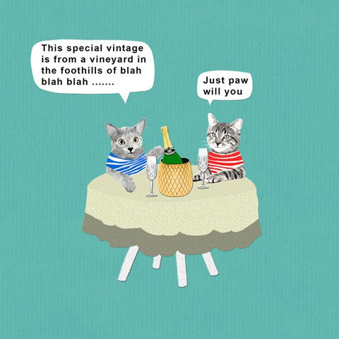 Cat Card, Special Vintage. From Sally Scaffardi Design