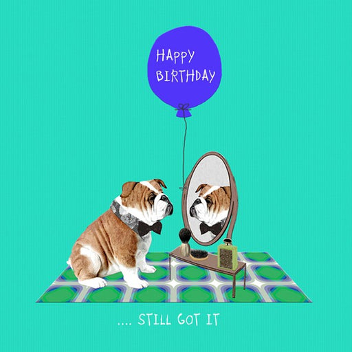 Bulldog Birthday Card, Still Got It.  From Sally Scaffardi Design