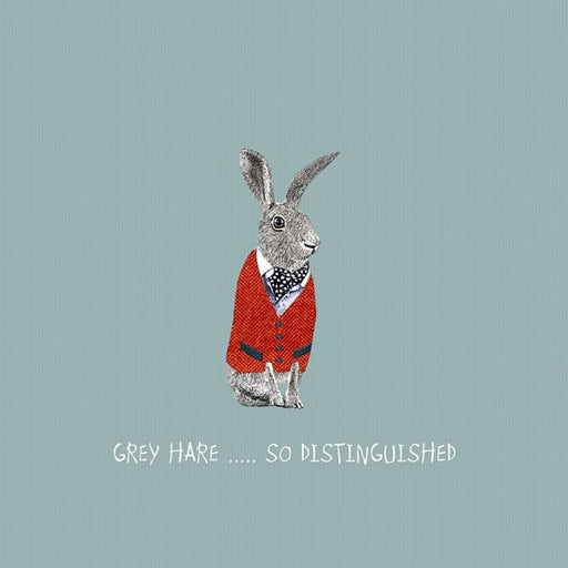 Grey Hare Birthday Card - Distinguished. From Sally Scaffardi Design