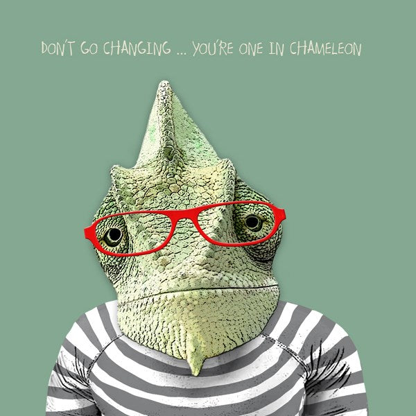 Don't Go Changing - From Sally Scaffardi Design