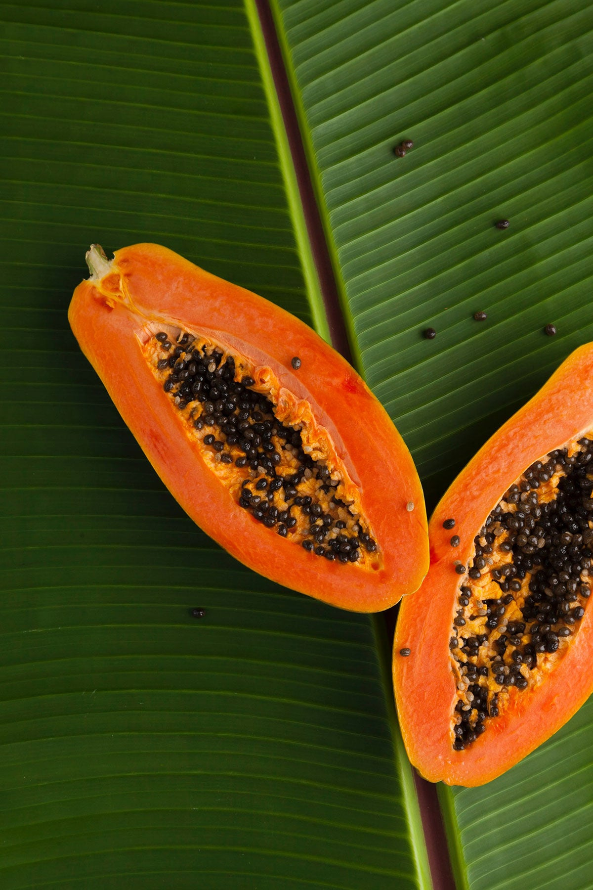 Papaya (pawpaw)
