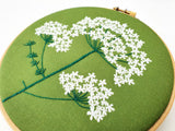 Queen Annes Lace Embroidery Pattern, Ladys Lace Embroidery Pattern, Wildflower Embroidery Pattern