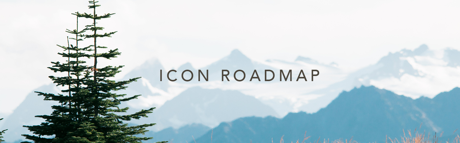 Icon Roadmap