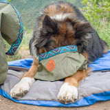 PET BACKPACKING BOWL