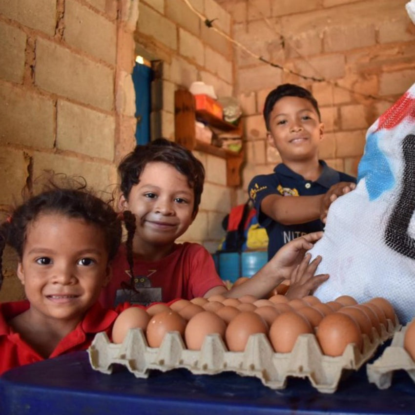 Chickens for a Venezuelan Family
