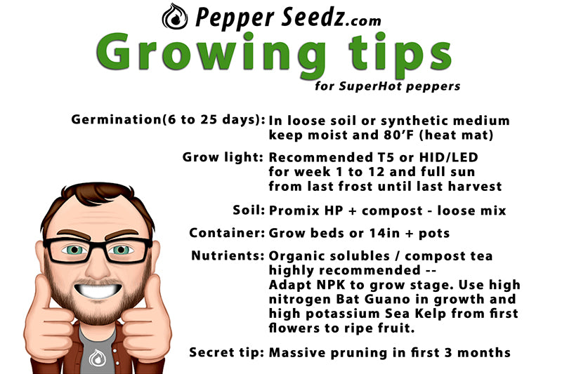 Growing hot peppers tips