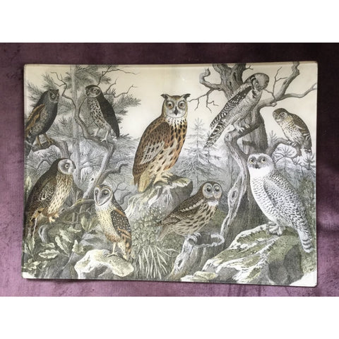 "Vintage decoupage glass plate - ""A Parliament of Owls"""