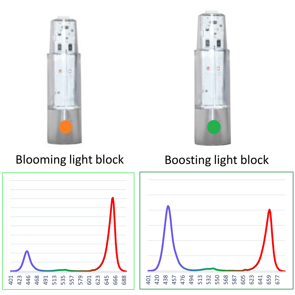 Blooming Light Block