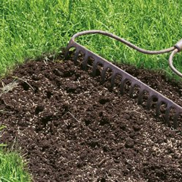 How to repair your lawn after the hot, dry summer...