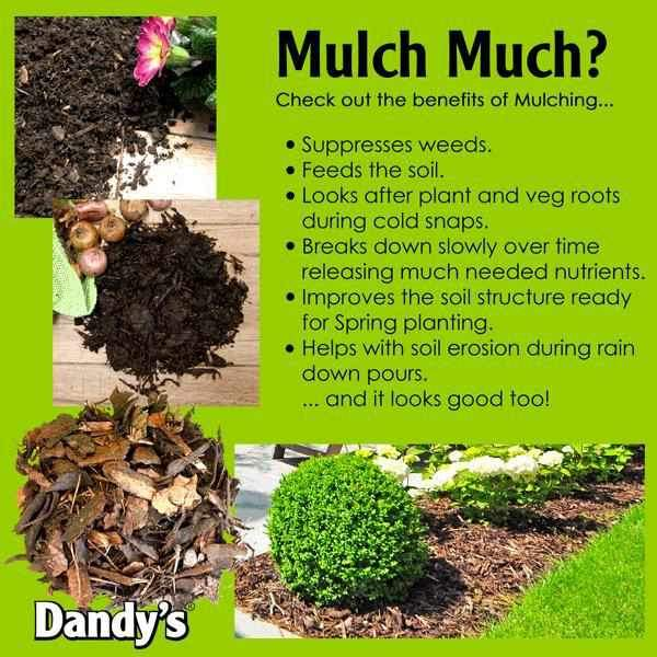 Do you Mulch Much?!