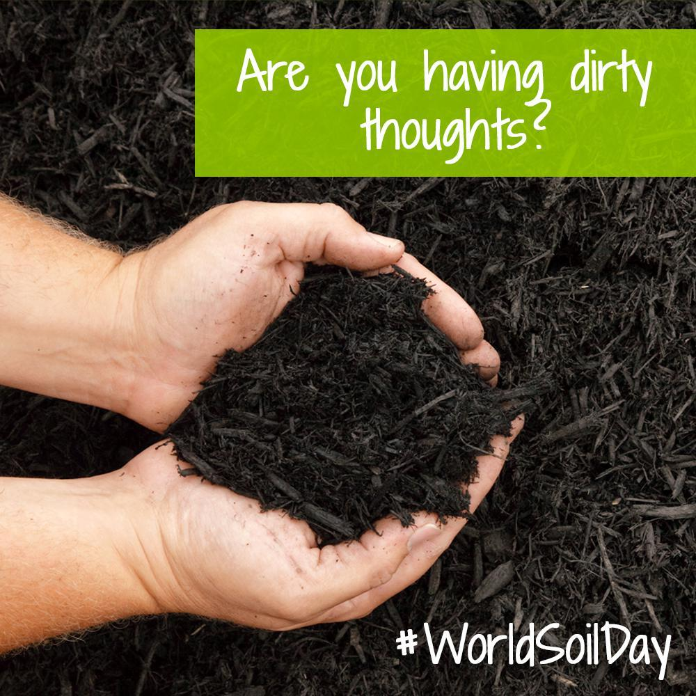 IT'S WORLD SOIL DAY!