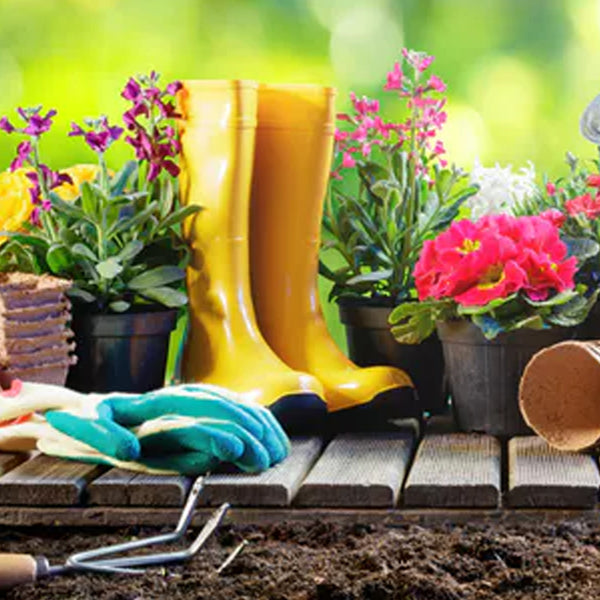Prepare your garden for Spring with our pre-season tips!