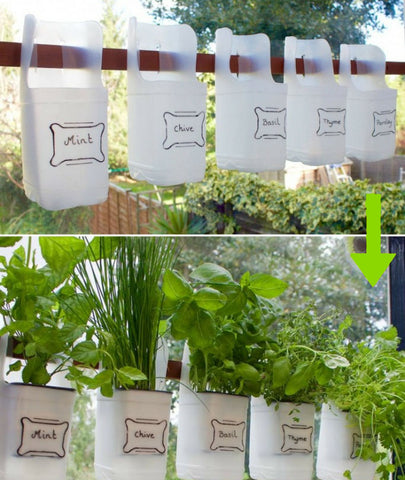 Milk Bottle Herb Garden