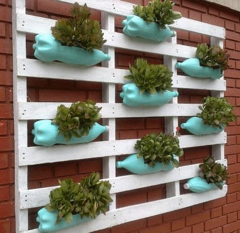 DIY pallet and bottle wall