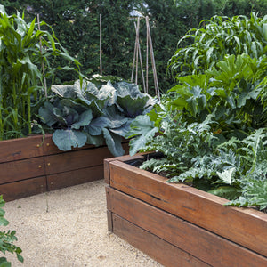 "Grow Your Own ""Raised Bed Kit"""