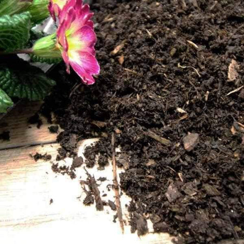 Composted Mulch Fines | Dandys