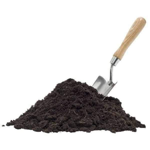 Image of Ericaceous Compost - single 50ltr small bag | Dandys