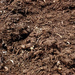 Image of Horse and Chicken Manure / Mushroom Compost | Dandys