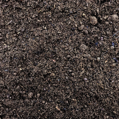 Image of Dandy's Bordermix® Topsoil for plants and flowers