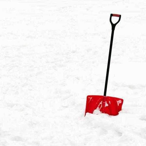 Snow Shovel | Dandys