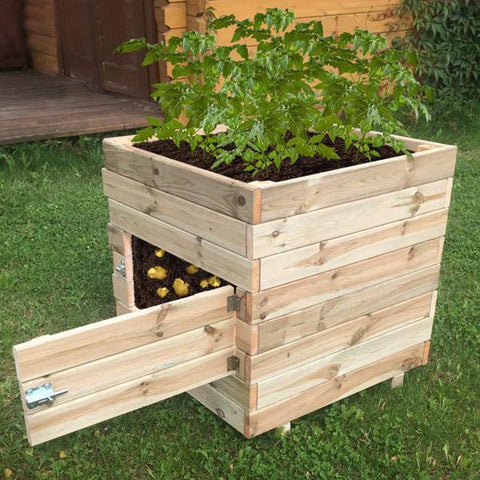 Square Potato Planter | Dandys