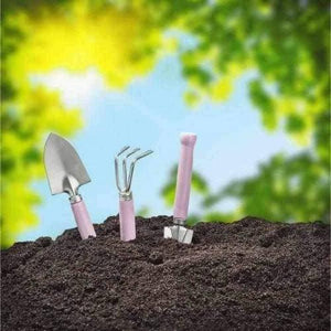Super Saver Multi Purpose Topsoil | Dandys