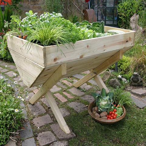 Image of Veg Bed | Dandys