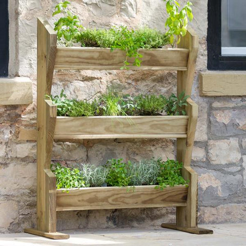Vertical Herb Stand | Dandys