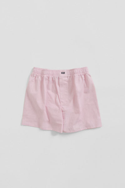 The Boxer Mini raya Rosa