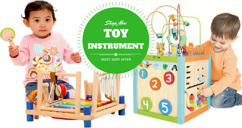 Toy Musical Instrument