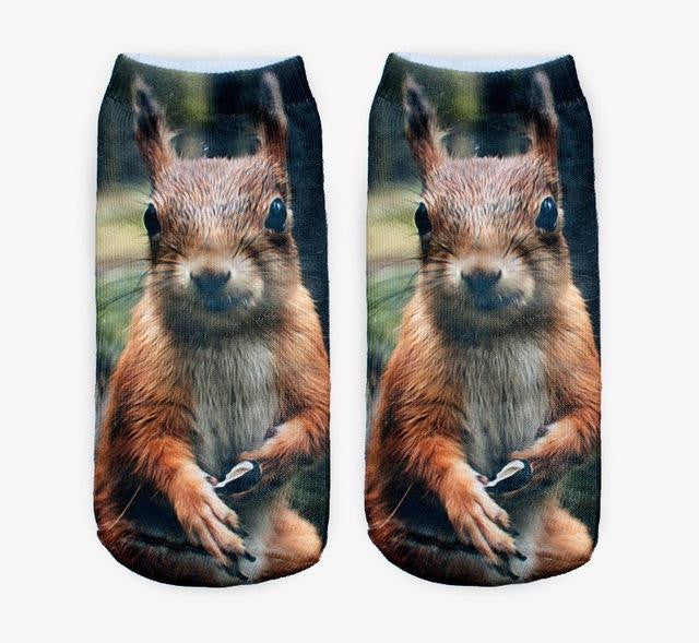 Squirrel  Women Low Cut Ankle Socks