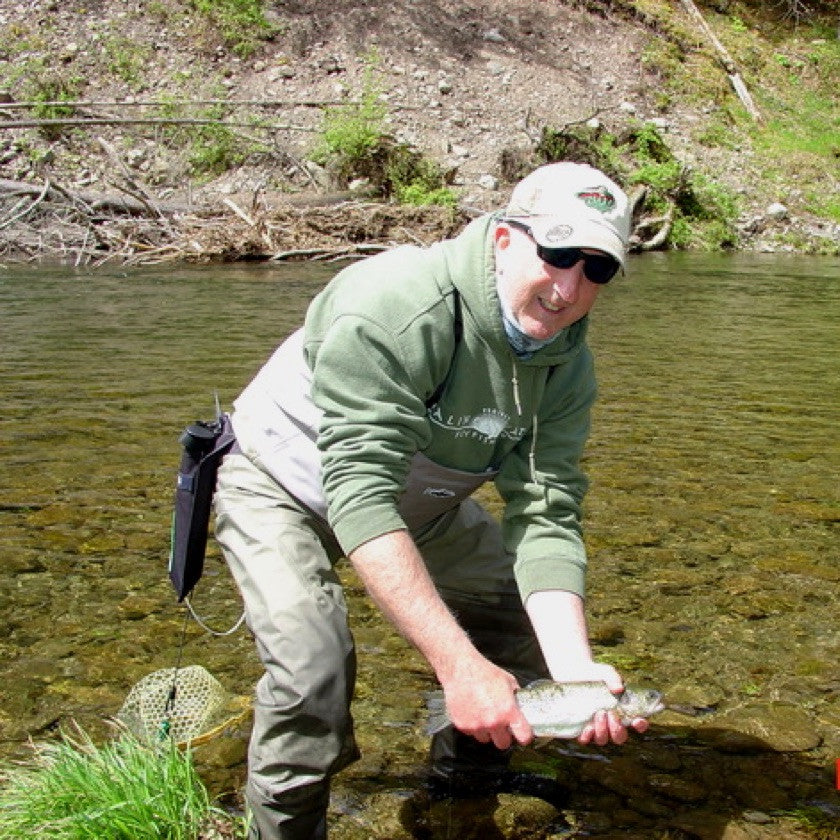 Beaverkill River Trout