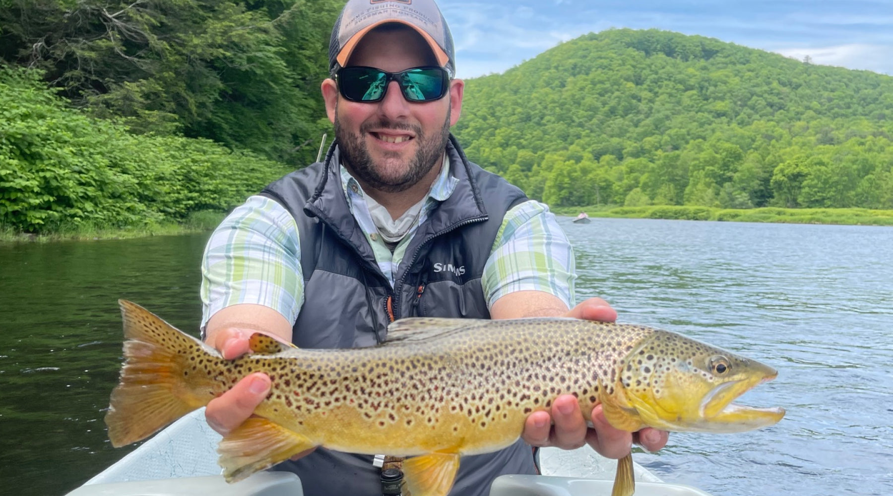 Delaware Brown Trout