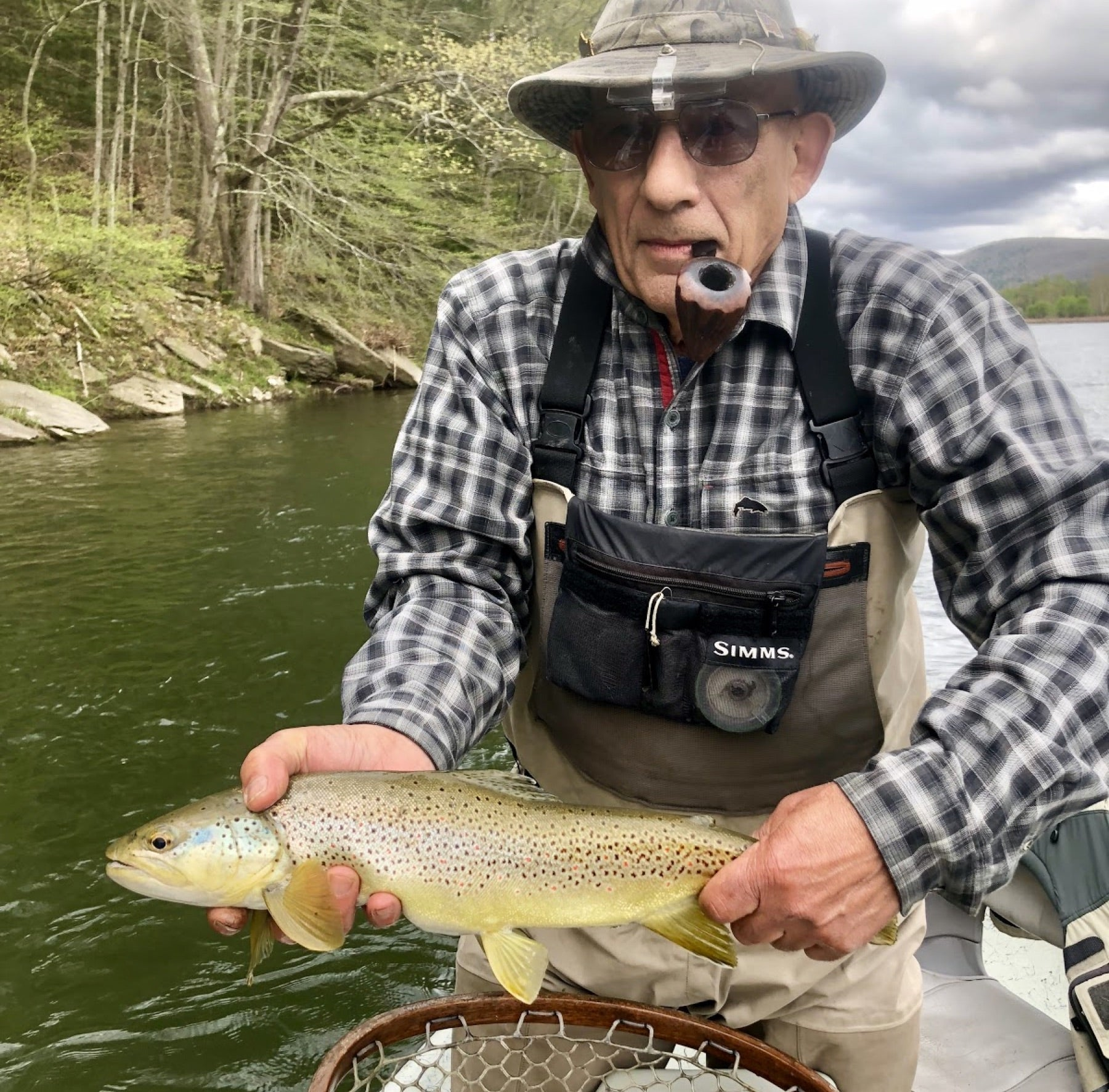 Delaware Renzeulla Sr Brown Trout